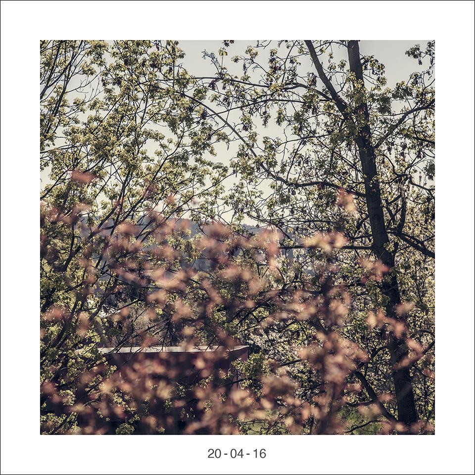 20_04_16.jpg