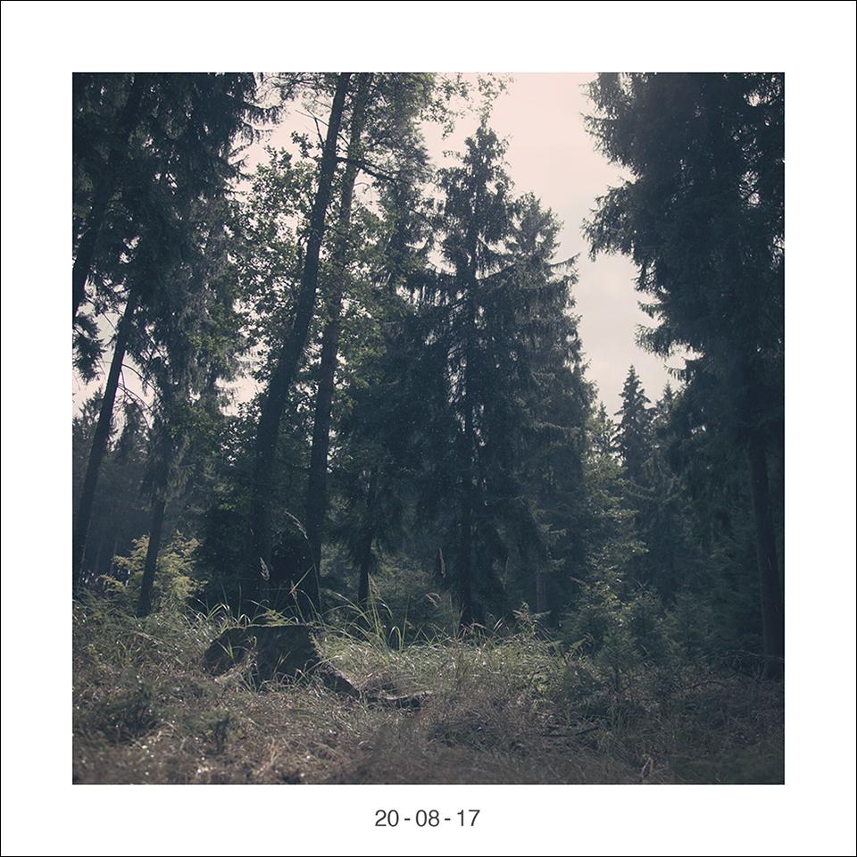 19_08_17