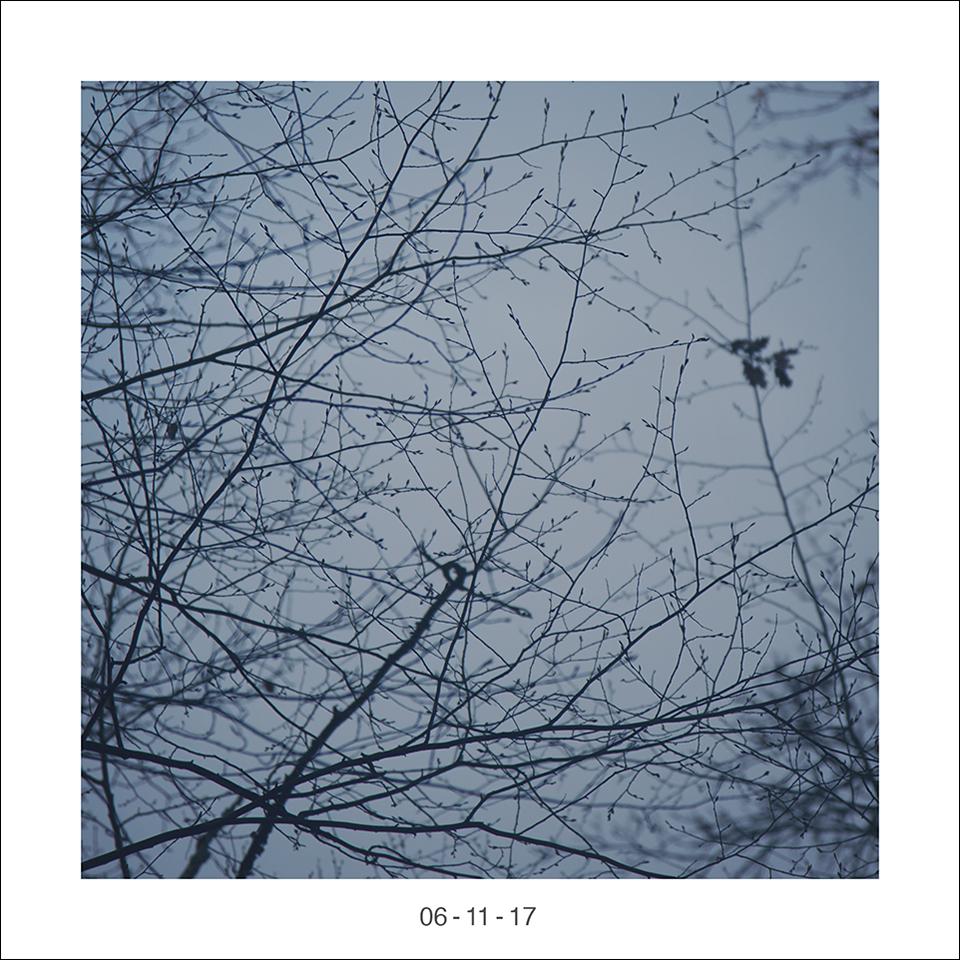 06_11_17.jpg
