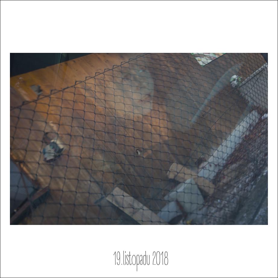 19_11_18.jpg