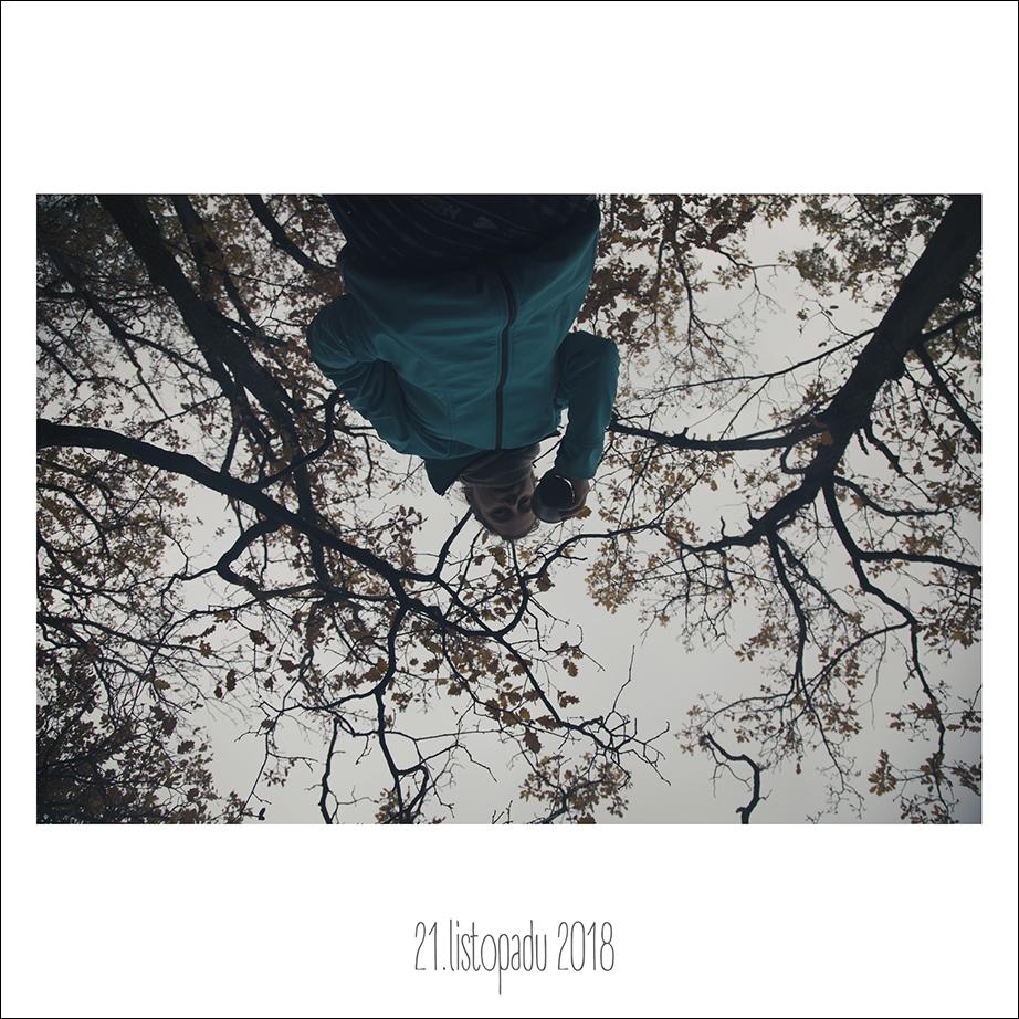 21_11_18